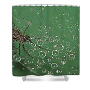 The Catcher Of Shperes Shower Curtain