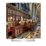The Cathedral  Shower Curtain