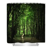 The Cathedral Arch Shower Curtain