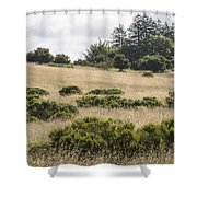 The Central Coast In May Shower Curtain