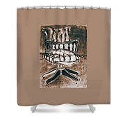 The Chair Of Constandinos Shower Curtain