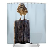 The Chairman Of The Board Shower Curtain