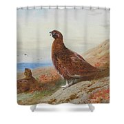 The Challenge By Thorburn Shower Curtain