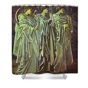 The Challenge In The Wilderness 1898 Shower Curtain
