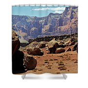 The Challenges Ahead Shower Curtain