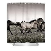 The Chase 1 Copper Shower Curtain by Roger Snyder