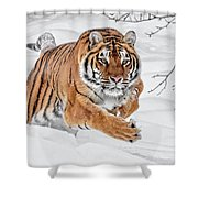 The Chase Is On Shower Curtain