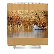 The Chase Is Over Shower Curtain