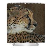 The Cheetah 2 Shower Curtain
