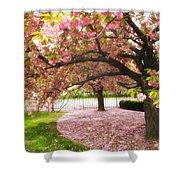 The Cherry Tree Shower Curtain