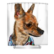 The Chihuahua Shower Curtain