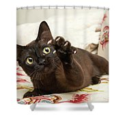 The Claw Shower Curtain
