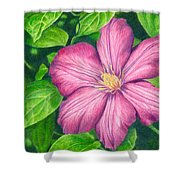 The Clematis Flower Shower Curtain
