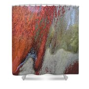 The Climb Shower Curtain