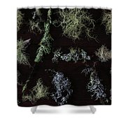 The Collection Of Lichens Shower Curtain