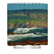 The Collonades Shower Curtain
