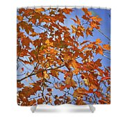 The Color Of Fall 2 Shower Curtain