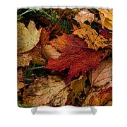 The Color Of Fall Shower Curtain