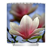 The Color Of Spring Shower Curtain