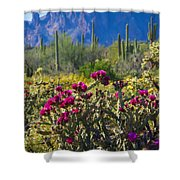 The Colorful Desert  Shower Curtain