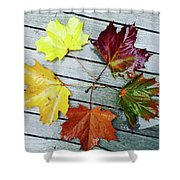 The Colours Of Autumn Shower Curtain