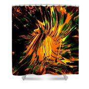 The Coming Of Thunder Shower Curtain