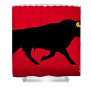 The Confident Italian Shower Curtain