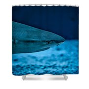 The Constant Search For Food Shower Curtain