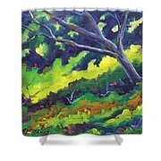 The Cool Shade Shower Curtain