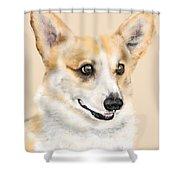 The Corgi Shower Curtain