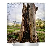The Cottonwood Shower Curtain
