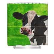 The Cow Shower Curtain
