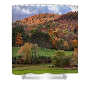 The Cows Are In The Dell  Shower Curtain