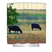 The Cows Next Door Shower Curtain