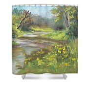 The Creek At 1302 Shower Curtain