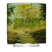 The Creek Shower Curtain