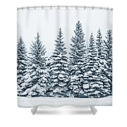 The Crown Of Winter Shower Curtain