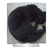 The Curled Black Cat Shower Curtain