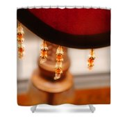 The Curve Of Desire Shower Curtain