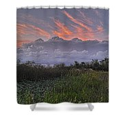 The Daily Disappearing Act Shower Curtain