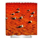 The Dance By Earl's Photography Shower Curtain