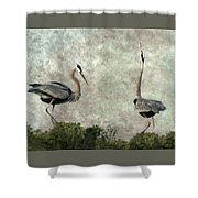 The Dance Of Life - Great Blue Herons In Mating Ritual - Digital Painting Shower Curtain