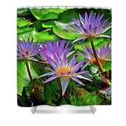 The Dance Of The Lillies Shower Curtain