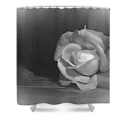 The Dark Rose Shower Curtain