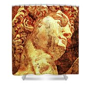 The David By Michelangelo Shower Curtain