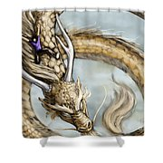 The Day I Could Fly Shower Curtain