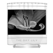 The Day Lily Poster Shower Curtain
