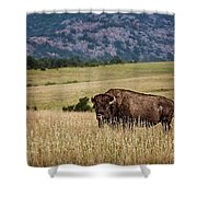 The Days End Shower Curtain by Tamyra Ayles