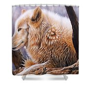 The Daystar Shower Curtain