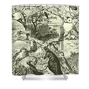 The Death And Burial Of Cock Robin Shower Curtain